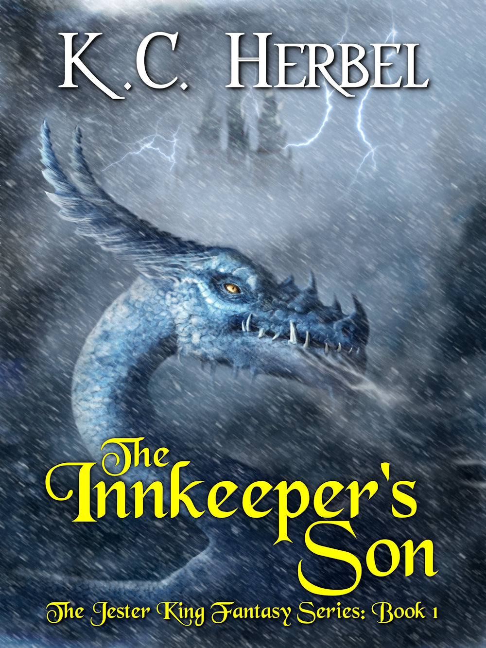 The Innkeeper's Son Book Cover